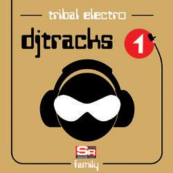 DJ TRACKS VOLUME 1 TRIBAL ELECTRO