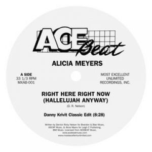 RIGHT HERE RIGHT NOW (DANNY KRIVIT EDIT)
