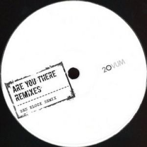 ARE YOU THERE (BEN KLOCK/ROD RMXS)