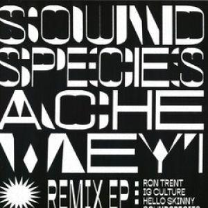 REMIX EP (RON TRENT RMX)