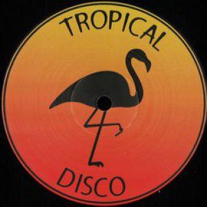 TROPICAL DISCO RECORDS VOLUME 13