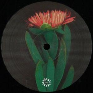 LIDO IRIDE EP (DON CARLOS/LTJ EXPERIENCE RMXS)