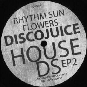 DSR HOUSE EP 2
