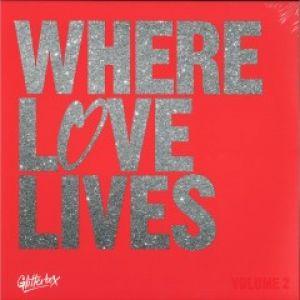 WHERE LOVE LIVES VOL.2